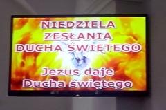 Niewachlów9